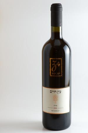 עץ חיים - מרלו 2009 - יין אדום יבש